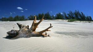 Zettara Beach Accessories, Beach Dresses, Beach Decor